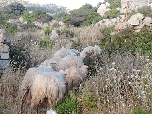 Agriturismo_trekking4