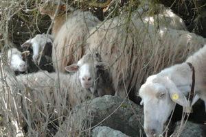 Agriturismo_trekking5