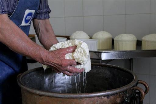 formaggio gallura turismo