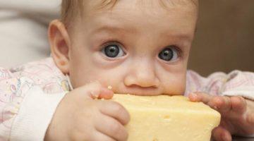 formaggio-sardo